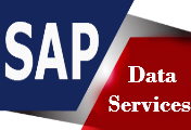Online SAP Data services training